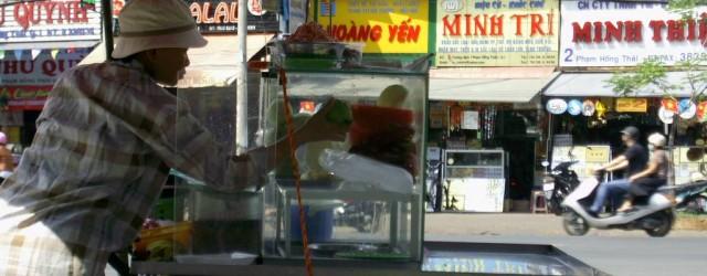 Et Voila, l'étape de Saigon est terminee, apres 12 jours passes dans cette ville aux 2 visages. Je n'avais encore jamais ressenti une telle opposition, un tel contraste au […]