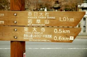 au milieu des temples, Nara
