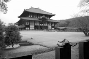 Baleineau devant le Daibutsu-Den Hall, Todai-ji, Nara