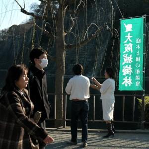Arrivee au jardin du château d'Osaka